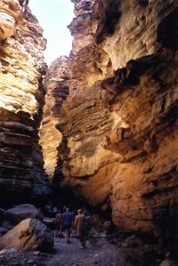 Black tail slot canyon