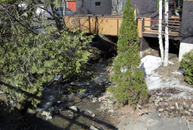 Our own little stream is now ice-free as well. And only a few small piles of snow remain.