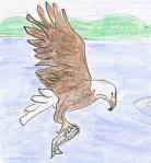 EagleFish