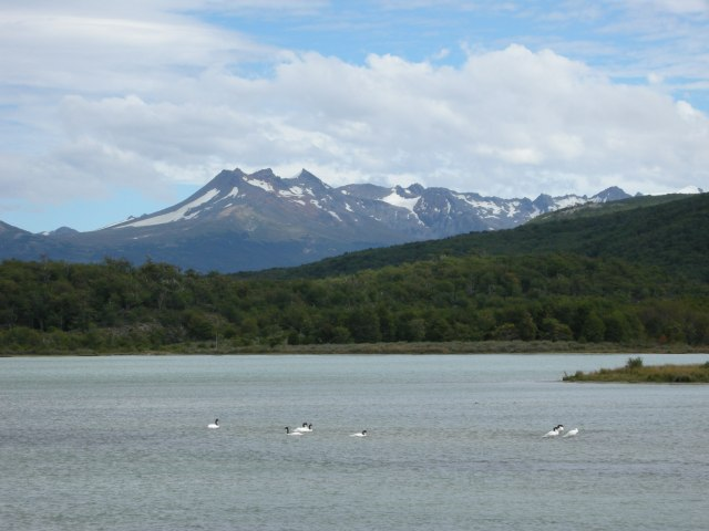 In Tierra del Fuego National Park