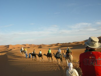 Maroc 294