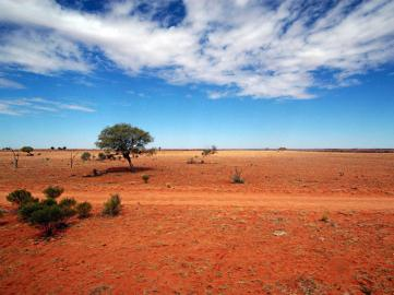Australian outback, Photo credit: independent.co.uk