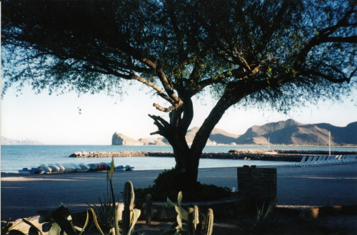 From our hotel. Loreto