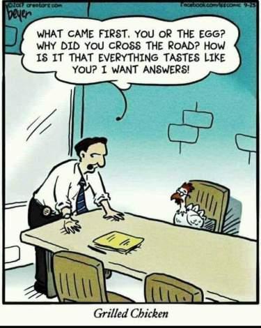 TT-ChickenCartoon
